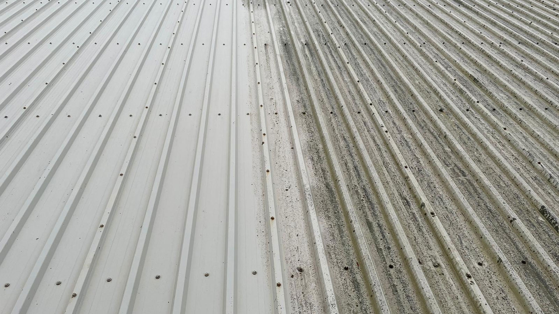 Commercial Roof Cleaning Exeter
